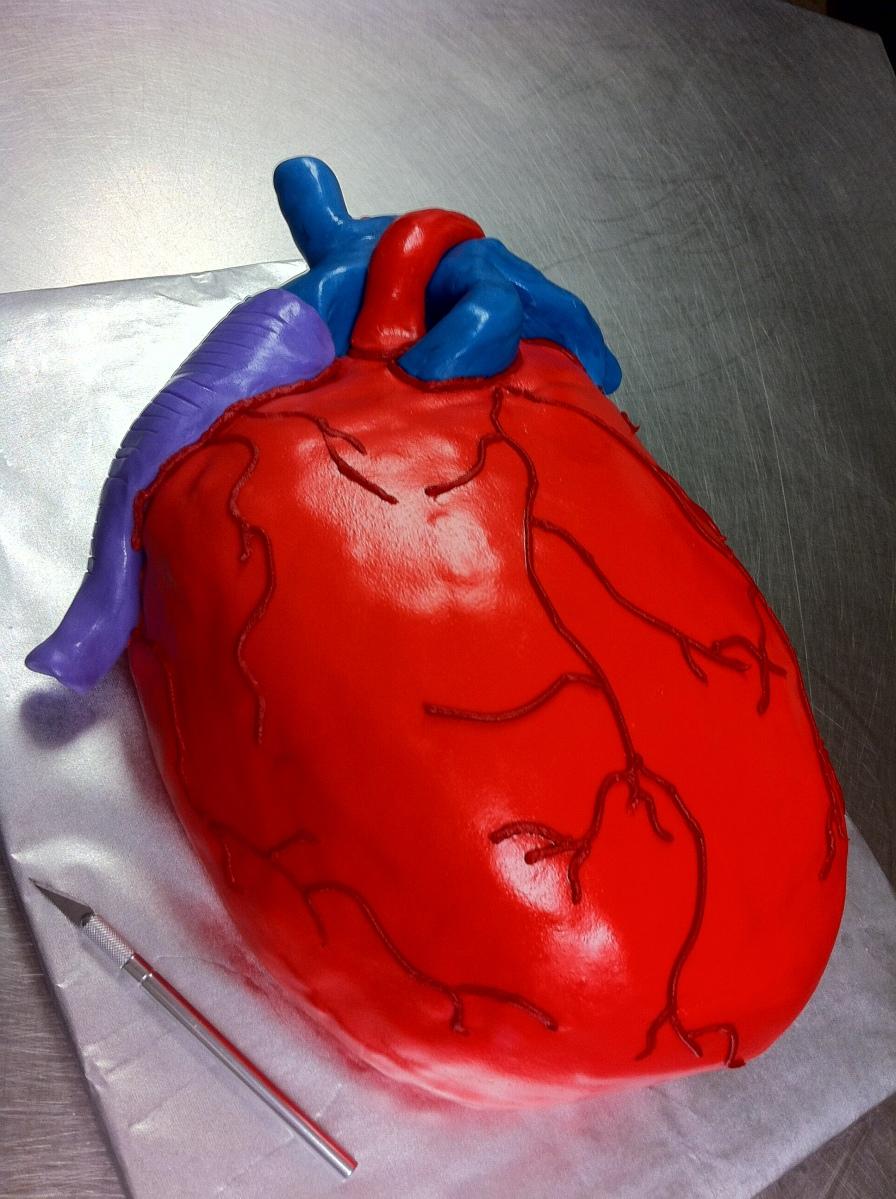 3D Human heart Cake