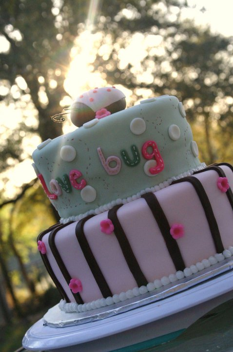 Mint Green And Pink Love Bug Ladybug Baby Shower Cake