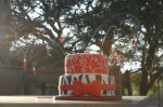 red and zebra print birthday cake