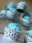 love bird tiffany blue cupcakes
