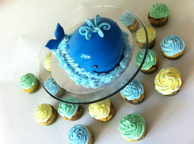 blue whale smash cake aerial view