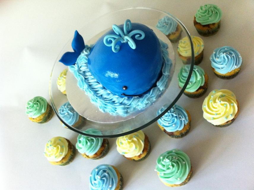 blue whale smash cake aerial view