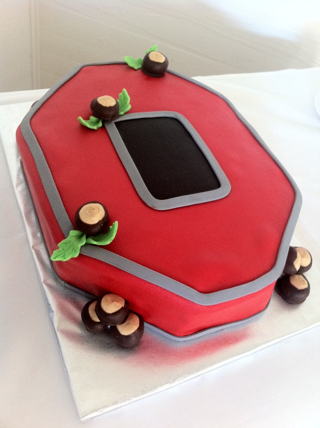 Ohio State grooms cake