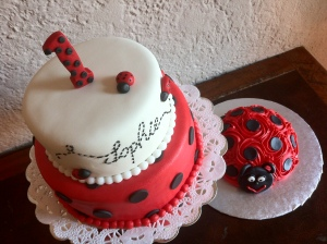Lady Bug red white black 1st birthday smash cake. Feeds 20-25. MSRP $125